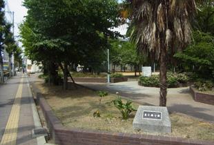 東小橋公園 300m