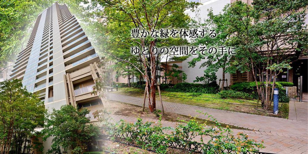 ザ・コムズシティ・ツインタワーズ野江D棟